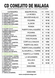 CARTEL PARTIDOS DIAS V-7-S-8-D-9 DE DICIEMBRE - CASA